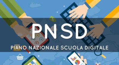 PNSD in breve